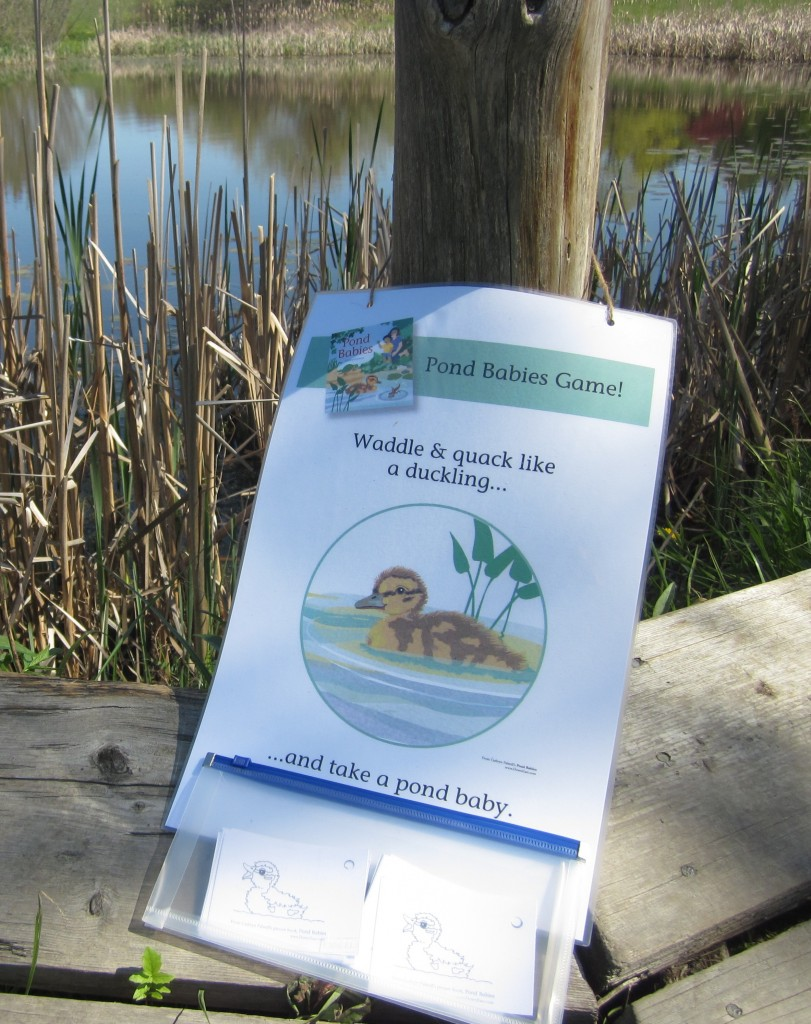 Story Hour Kit for Cathryn Falwell's POND BABIES